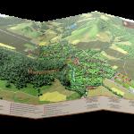 Лозаро-винарска панорамна карта - дипляна